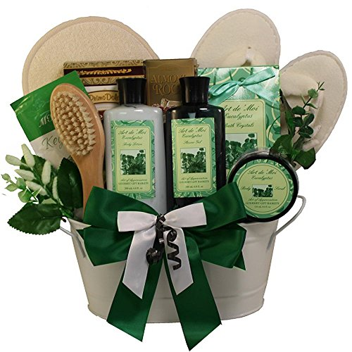 Art of Appreciation Gift Baskets Peace and Relaxation Eucalyptus Spa Bath and Body Gift Set (Gift Basket Websites)