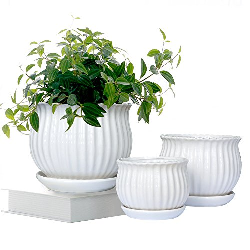 GeLive Set of 3 White Ceramic Flower Pots, Succulent Planters, Garden Plant Container with Saucers, Small to Large Size, Elegant, Great for Home Decor White