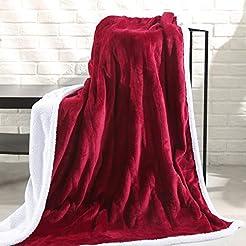 MaxKare Electric Blanket Heated Throw Fl...