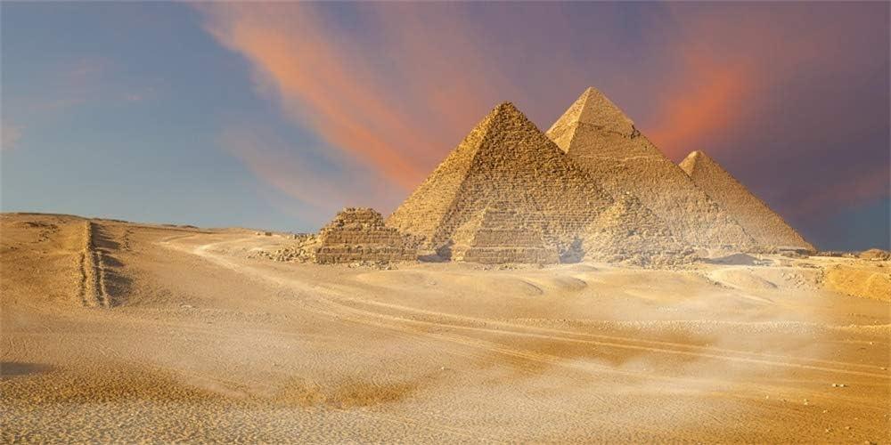 Egypt Pyramid Pharaoh Cheops Giza Valley 15x8ft Vinyl Photography Background Desert Gold Ancient History Studio Family Wallpaper Photo Prop Backdrop Portraits Shoot