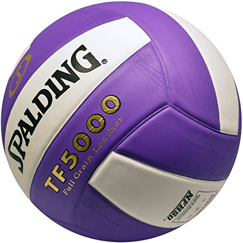 Spalding Tf5000 Tournament Leather Volleyball