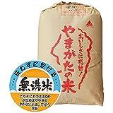 山形県産 無洗米 白米 もち米 ヒメノモチ 30kg 平成30年産 新米