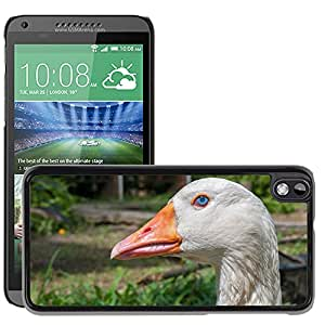Hot Style Cell Phone PC Hard Case Cover // M00117269 Goose Bird Poultry Domestic Farm // HTC Desire 816
