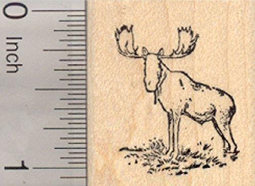 Bull Moose Rubber Stamp, Eurasian elk, Small