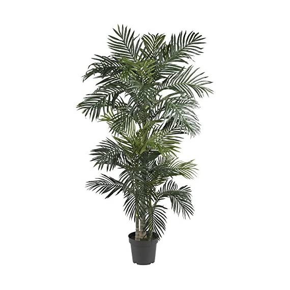 Nearly Natural 7 ft. Golden Cane Silk Palm Tree - Dimensions: 45W x 40D x 78H in. Natural-looking silk leaves Arranged in black plastic pot - living-room-decor, living-room, home-decor - 51Ep7txc8NL. SS570  -