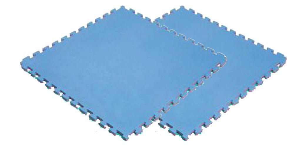 ボディメーカー(BODYMAKER) リバーシブルジョイントマット2.0 100×100×2cm レッド×ブルー 2枚 2枚 B0169PXZUG B0169PXZUG, ワントラスト:343cb31f --- capela.dominiotemporario.com