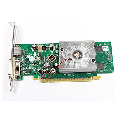 ASUS GeForce 8440 GS DVI/S-Video 256MB PCI-e Video Card HP (Low Profile 256mb Pci Express)