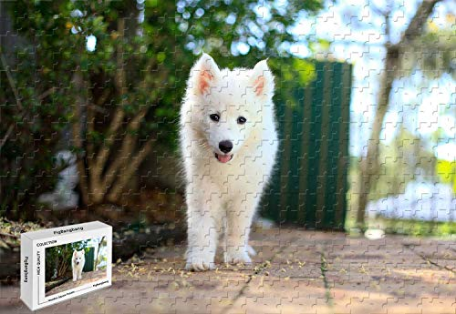 (1000 Piece Jigsaw Puzzle - Samoyed Puppy White Dog Basswood Materials 29.5 X 19.6 Inch)