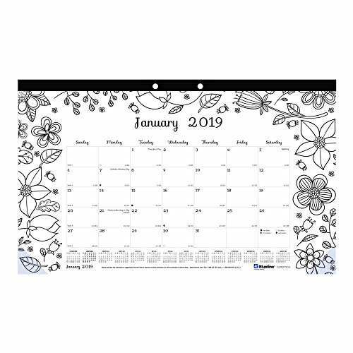 Price comparison product image Blueline 2019 DoodlePlan Monthly Coloring Desk Pad Calendar,  Botanica designs,  January to December,  17.75 x 10.875 inches (C2917001-19)