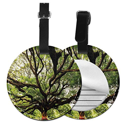 Round Travel Luggage Tags,The Largest Monkey Pod Tree In Thailand Eastern Green Big Branches Growth Eco Photo,Leather Baggage Tag 2 PCS Eco Leather Club Chair