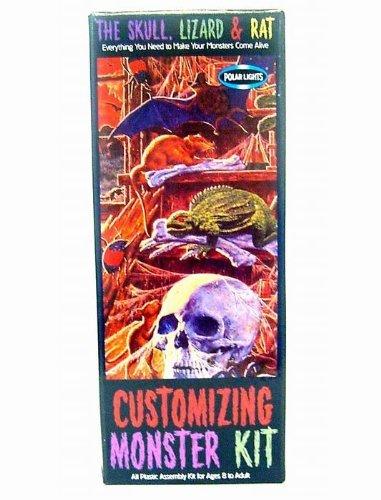 Customizing Monster Model Kit #1 Aurora Polar Lights