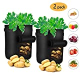 Amanda Grow Bags, 2-Pack 7 Gallon Potato Planter Bag, Double Layer Nonwoven Cloth Fabric Pots with Handles - Velcro Window Vegetable Planting Bags /Potato Peanut Growing Box/ Planting Bucket Pot for Nursery Garden(2 Pack)