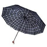 Aerusi Wired 10 Frame Manual Two Person Umbrella, Aqua and Purple Plaid