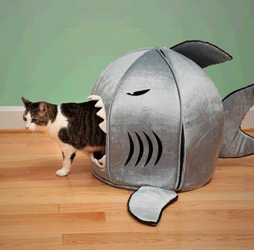 Amazon com : Japanese Shark Pet Beds / Shark Attack Dog Bed