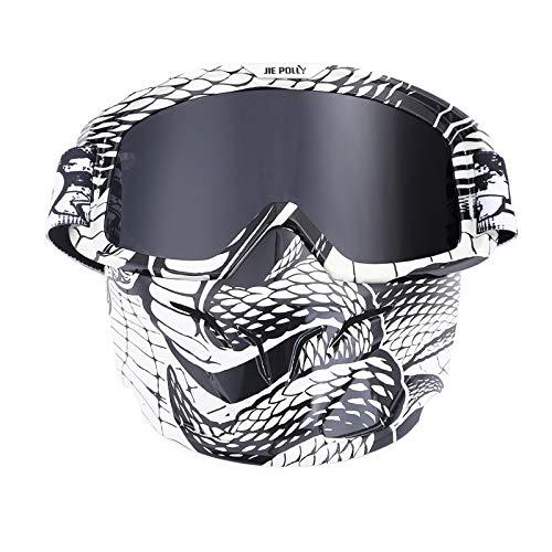 Adisaer Sport Brille Herren Motocross Mirror Retro Mask Goggles Helmet Gray A04 for Adults (Retro Brillen Herren)