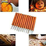 Halloween 12 PCS SK2 Professional Pumpkin Carving Tools Knife Kit - Great for Beginners Carving Sculpt Jack-O-Lantern - Professional Carving Knife