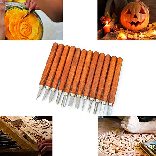 Halloween Pumpkin Carving Ideas (Halloween 12 PCS SK2 Professional Pumpkin Carving Tools Knife Kit - Great for Beginners Carving Sculpt Jack-O-Lantern - Professional Carving Knife)