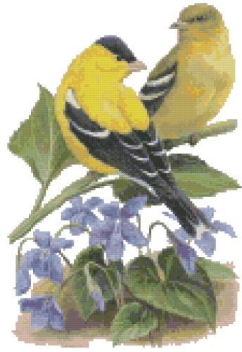 New Jersey State Bird (Eastern Goldfinch) and Flower (Common Meadow Violet) Counted Cross Stitch Pattern