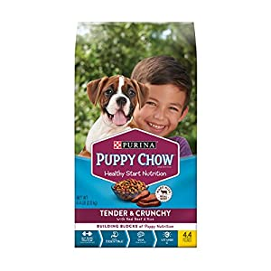 Purina Puppy Chow High Protein Dry Puppy Food, Tender & Crunchy with Real Beef – (4) 4.4 lb. Bags