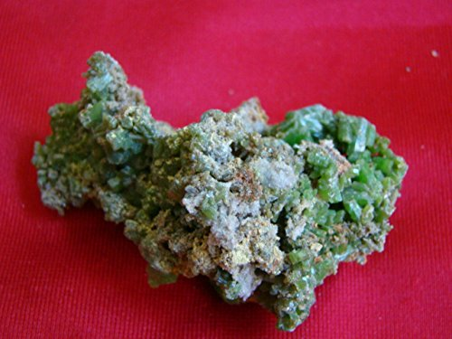 Pyromorphite Crystals (Flo4510 Green Pyromorphite Crystals Beautiful Cluster)