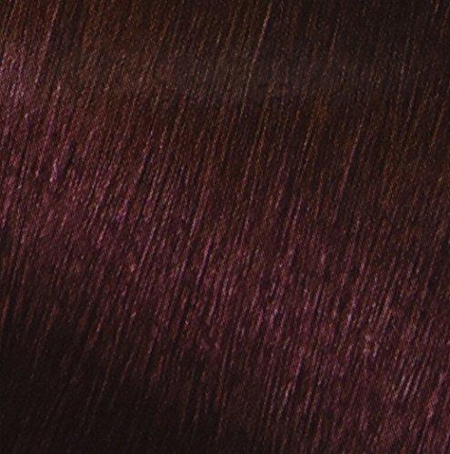 Garnier Nutrisse Nourishing Hair Color Creme 42 Deep