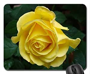 Yellow Rose for Charismatic Mouse Pad, Mousepad (Flowers Mouse Pad)