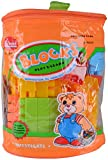 Shree Building Blocks (56 Pieces)- Multi-colour