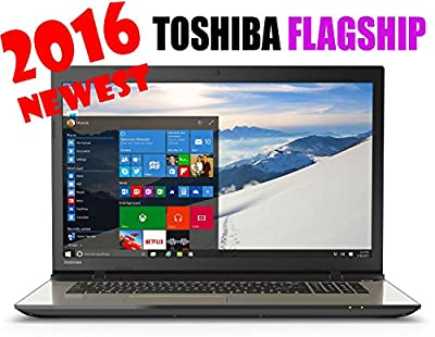 2016 Newest Toshiba 17.3' High-Performance Flagship Laptop - Intel Core i5-5200U - 8GB - 1TB HDD - DVD - Windows 10 Home