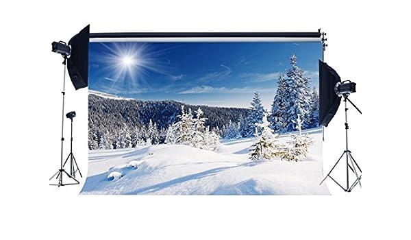 RBabyPhoto CK162 - Fondo de Nieve para Estudio fotográfico de Navidad de Navidad para Niños y Adultos, Diseño de árboles de Bosque de Invierno: Amazon.es: Electrónica