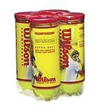 Wilson Championship Extra Duty Tennis Ball (4-Pack), Yellow