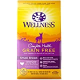 Wellness Complete Health Natural Grain Free Dry Small Breed Dog Food, Turkey, Chicken & Salmon, 4-Pound Bag