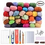 Hisome Needle Felting Wool Set Wool Felt Tools with 36 Colors Wool Roving Felting Starter Basic Kit