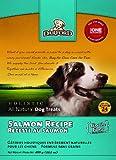 Darford Holistic All Natural Grain Free Salmon Recipe Dog Treats, 14.1-Ounce, My Pet Supplies