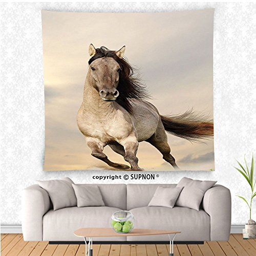 VROSELV custom tapestry Animal Decor Collection Wild Young Stallion Horse Running at Sunset Male Power Nake Muscular Physique Nobility Photo Bedroom Living Room Dorm Wall Hanging Tapestry - Teen Girl Nake