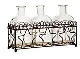 "Multi Vase Glass With Star Metal Rack For Home Office Decor Set of 3 Small Vases 5.5""H"