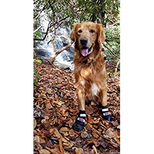 Bark Brite All Weather Neoprene Paw Protector Dog Boots with Reflective Velcro Straps in 5 Sizes! 48