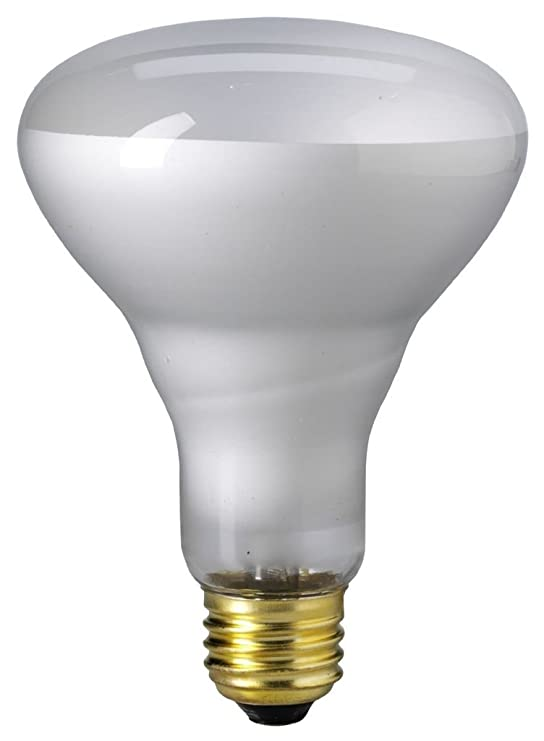 Eiko 65BR30/FL-130V 65W 130V Flood BR30 Medium Base, - Incandescent Bulbs - Amazon.com