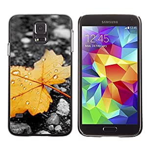 Stuss Case / Funda Carcasa protectora - The End Of A Withered Leaf - Samsung Galaxy S5