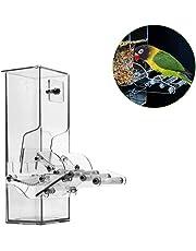 BEENZY Accessoire Automatique d'oiseau, Accessoires acryliques de Cage à Oiseaux de récipient de Nourriture de Graine de récipient Acrylique d'oiseau pour Le Perroquet Canary Cockatiel