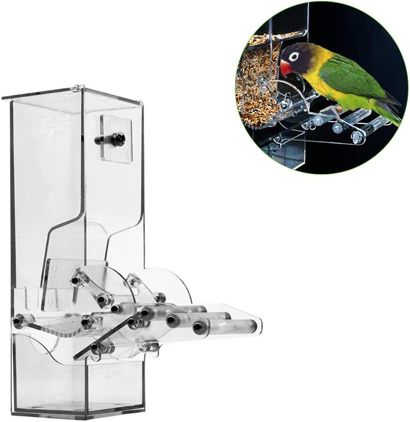 Zebroau - Jaula para pájaros, Semillas acrílicas, contenedor de Alimentos, Jaula para pájaros, aditivos para periquitos de Periquito, Color Rosa