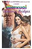 Bisexual Delicious Bridges: A Lesbian and Bisexual Romance Book Collection