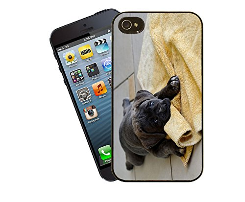 Hund 016 Telefon Fall - passen diese Abdeckung Apple Modell iPhone 5 / 5 s (nicht 5c) - von Eclipse-Geschenk-Ideen
