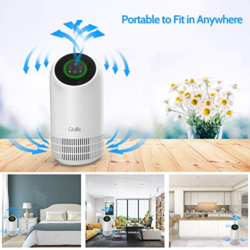 GBlife Hepa Carbon Air Purifier - 4 Stage Filtration Air Cleaner with Timer, Night Light for Home, Bedroom, Office, Car, Pet, Smoke, Dust, Odor, No Ozone
