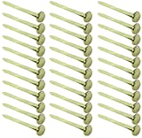Clipco Paper Fasteners Large 1-Inch Brass Plated