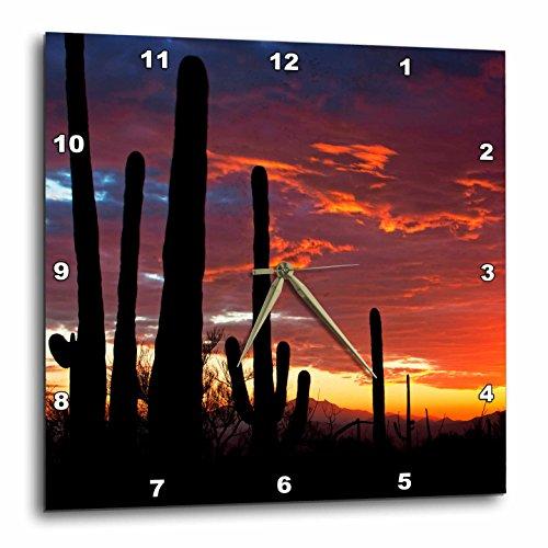 (3D Rose Sunset in The Sonoran Desert - Saguaro West NP - Tucson - Arizona Wall Clock 10