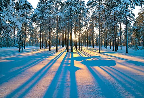 AOFOTO 5x3ft Sunset Winter Landscape Backdrop Snow Covered Forest Photography Background Pine Trees Woodland Shadow Photo Studio Props Holiday Year Photo Booth Studio