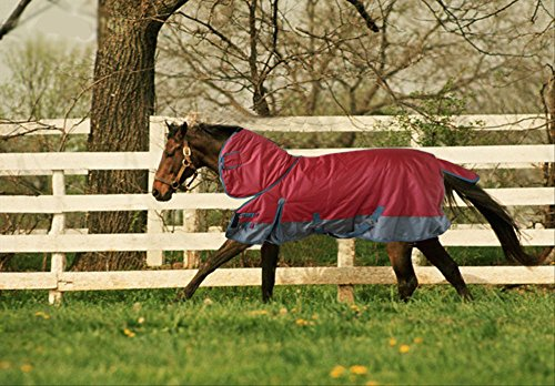 TURNOUT 1680D HORSE WINTER WATERPROOF With NECK COVER - HORSE BLANKET 001 - Size from 69