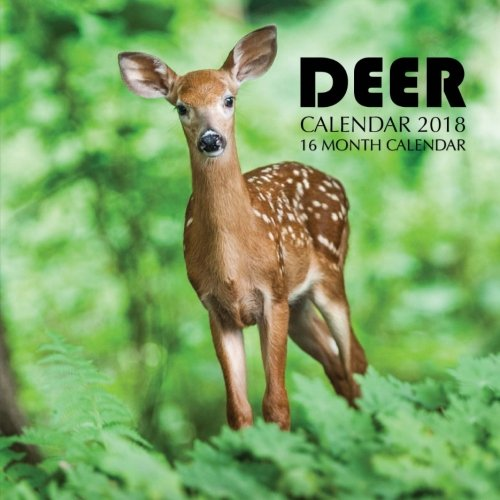 Deer Calendar 2018: 16 Month Calendar -