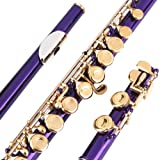 Glory Closed Hole C Flute With Case, Tuning Rod and Cloth,Joint Grease and Gloves Purple/Laquer --More Colors available,Click to see more colors