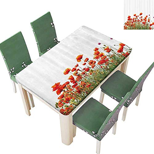 Printsonne Spring & Summer Outdoor Tablecloth, Springfield Countryside Botanical Nature Meadow Landscape Multicolor 50 x 102 Inch